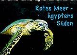 Rotes Meer - Ägyptens Süden (Wandkalender 2019 DIN A2 quer): Unterwasseraufnahmen während einer Tauchsafari zu den St. John's-Inseln (Monatskalender, 14 Seiten ) (CALVENDO Tiere)