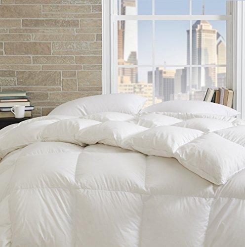 dreamstead von cuddledown Prime 550FP Entendaunen Blended mit down-alternative Wärmer Hypoallergen Bettwäsche Tröster, Full/Queen, weiß -