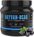 GYM - NUTRITION BCAA + VITAMIN B6 | Hochdosiertes Pulver | Leucin | Isoleucin | Valin 2:1:1 | In Deutscher Premium Qualität | Vegan | Geschmack Johannisbeere