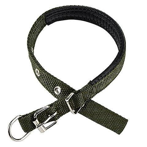 Hundehalsband Zubita Weiche Nylon Halsband Welpen mit Leder Gefüttert Verstellbar, Bequem, Metal D-Shape Buckle Design Komfortable Durable Bewerben auf Kleine Hunde ( Armee grün )
