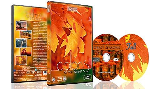 Natur DVD - 2 DVD Set - Farben des Waldes | Naturlandschaften mit Musik und Naturgeräuschen