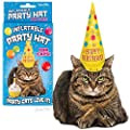 Archie Mcphee 0739048127867 Inflatable Cat Party Hat from Archie Mcphee
