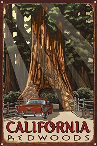 Northwest Art Mall California Redwoods Auto durch Baum rustikal Metall Kunstdruck von {Künstler. fullname} ({outputsize. shortdimensions}) 12x18 inch