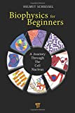 Biophysics for Beginners: A Journey Through the Cell Nucleus