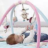 Fehn 081657 3-D-Activity-Decke Esel – Spielbogen mit 5 abnehmbaren Spielzeugen für Babys Spiel & Spaß von Geburt an – Maße: Ø85cm Test