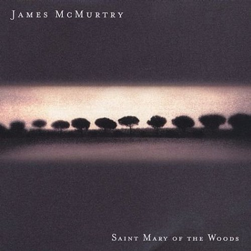 Saint Mary of the Woods (James Mcmurtry-cd)