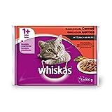 Soluciones digestivas para gatos