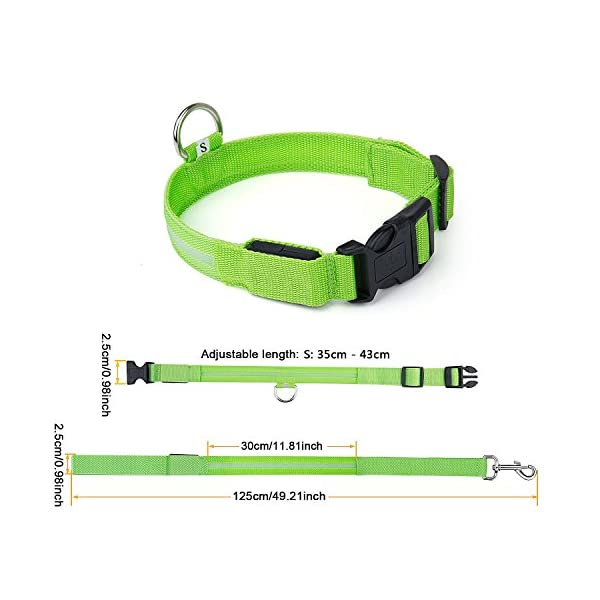 ZeWoo USB Rechargeable LED Dog Safety Collar + LED Dog Lead/Leash - Great Visibility & Improved Safety 5