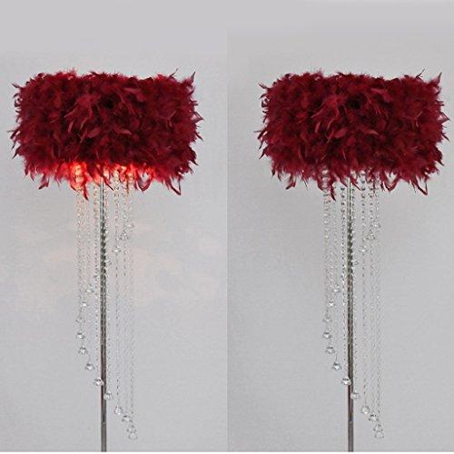 Protection des yeux pour Moderne simple mariage habitable chambre à coucher salon haut de gamme hôtel plume cristal gland atterrissage Lampadaire (6 couleurs à choisir) Décoration d'intérieur AA+ ( Couleur : Vin rouge )