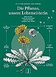 Die Pflanze, unsere Lehrmeisterin: sieht und fühlt, denkt und entscheidet, intelligent, klug, friedlich