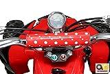 Mini Elektro Kinder Racer rot/schwarz - 5