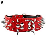 ALCYONEUS Kunstleder Cool Halsband breit Hundehalsband Spikes Dekor (M, Rot / Red)