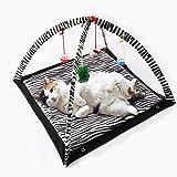 Pet Gioca Mat, Letto Giocattolo per Gatti, Gatto Pieghevole Tenda Multiuso, Modello Zebra Modello Tigre con Piccolo Giocattolo Pet Strisciare Gioco Tenda Mat -61 * 61 * 34cm