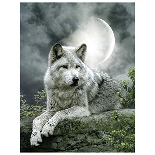 C75-box (ihuoshang Diamantmalerei Diamant-Stickerei DIY Full Square Tiere Wolf-Diamant Mosaik-Diamant Malerei Bohrer 50x40cm Rolled Box C75)