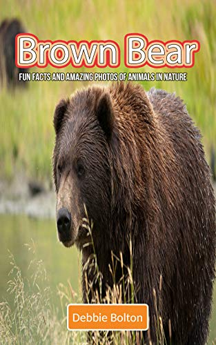 Brown Bear: Fun Facts and Amazing Photos of Animals in Nature (English Edition)