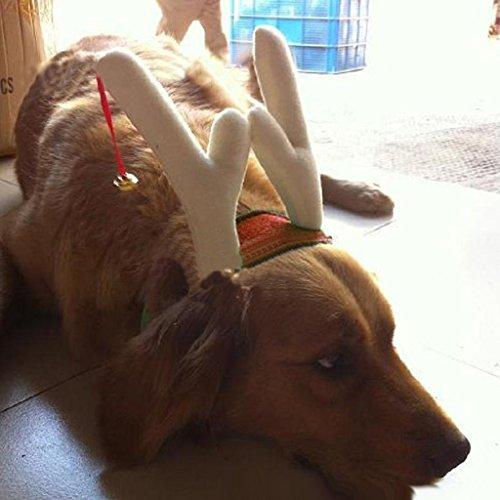 Generic Hund Welpen Haustier Katze Weihnachten Haarreif Stirnband Haarband Kopfband Rentier Design Kostüm Schmuck - Rot, (Kostüme Rentier Hund)