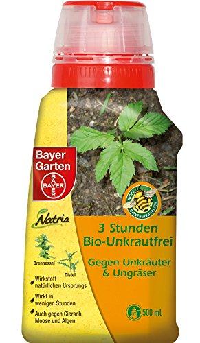 Bayer 79903936