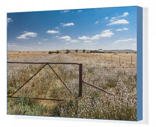 canvas-print-of-detail-gate-and-post-in-wildflowers-with-distant-farm-house