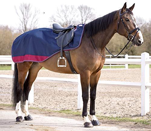 Reitsport Amesbichler Nierendecke Equitheme TYREX 1200 D Equi-Theme wasserdicht mit Fleecefütterung dunkelblau/weinrot, 165 cm
