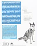 Image de Le chien, un loup civilisé NE