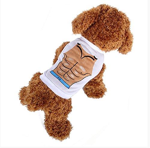 Physiker Kostüm - Inception Pro Infinite Kostüm - Verkleidung - Impressum - Brust - Muskulös - Bodybuilding - Athletisch Physiker - Muskeln - Hund (S)