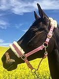 Happy-Horse-Deals Halfter mit Fell und Messingbeschlägen, zweifach verstellbar, 5 Farben (rosa)