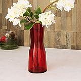 Home Centre Eadric Glass Vase - Red