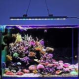 ZWD 54w Ip65 Impermeable Led Luz de Acuario para Arrecife Crecimiento de Coral Tanque de Peces