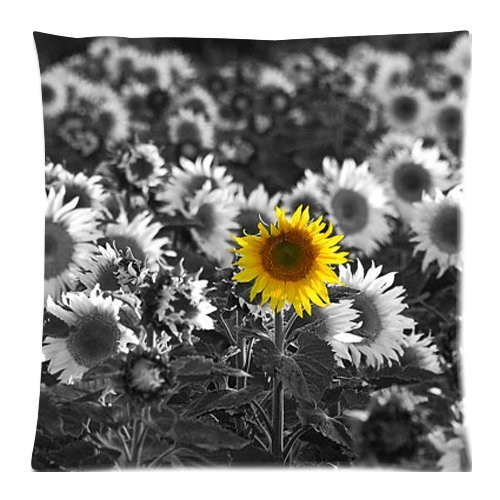 The New Arrive 2015 Sunflower Black & White Yellow Nature Summer Pillow Cases - 18x18