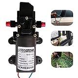 zology Hohe Druck selbstansaugend Membran Wasserpumpe für Auto waschen boot Reinigung und Garten Bewässerung