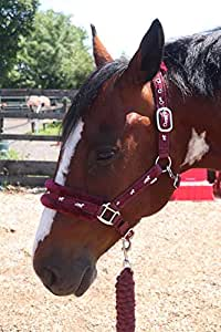 Lead Rope Horse Pony COB Full shetland UK pet cotton