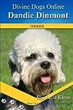 Dandie Dinmont Terrier (Divine Dogs Online, Band 40)