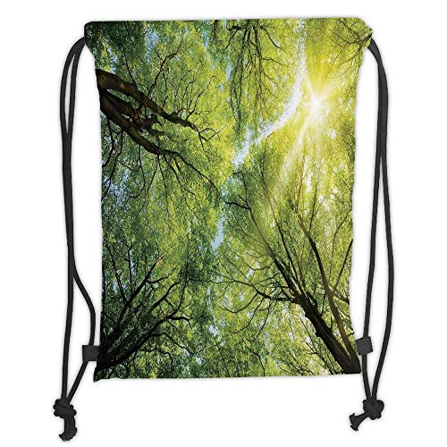 LULUZXOA Gym Bag Printed Drawstring Sack Backpacks Bags,Farm House Decor,The Warm Spring Sun Through The Canopy of Tall Beech Trees Romantic Scene,Green Yellow Soft Satinring Clos