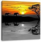 Afrikanische Steppe mit Elefanten schwarz/weiß, Format: 60x60 auf Leinwand, XXL riesige Bilder fertig gerahmt mit Keilrahmen, Kunstdruck auf Wandbild mit Rahmen, günstiger als Gemälde oder Ölbild, kein Poster oder Plakat