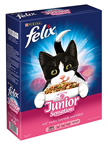 katzeninfo24.de Felix Katzentrockenfutter Junior Sensations (mit Huhn, Getreide und Milch) 7er Pack (7 x 1kg) Karton