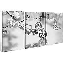 Lienzo 3 piezas Negro Blanco Agua Mariposas Flores Flor Cuadro 9A409 - 120x80cm (3Stk 40x 80cm)
