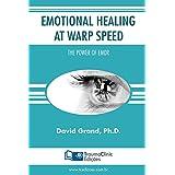 Emotional Healing at Warp Speed: The Power of EMDR (English Edition)