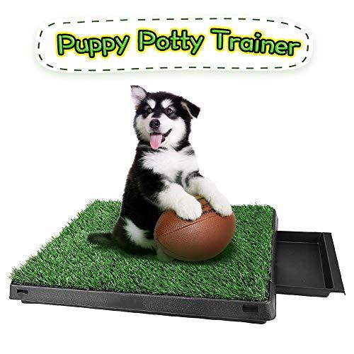 Memoline Hundeklo Hunde Toilette mit Simuliertem Rasen Welpentoilette Trainingsunterlage für Kleine Hunde Grosse Hunde ältere Hunde Tier WC Indoor 63 x 51x 7cm