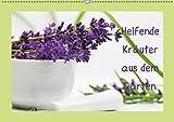Helfende Kräuter aus dem Garten (Wandkalender 2019 DIN A2 quer): Sommerkräuter die helfende und heilende Wirkung haben können (Monatskalender, 14 Seiten ) (CALVENDO Gesundheit) -