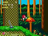 Sonic Mega Collection -