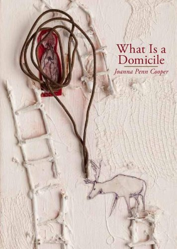 What Is a Domicile by Joanna Penn Cooper (2014-06-30)
