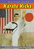 Karate Kicks (Martial Arts)