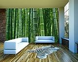 selbstklebende Fototapete - Bambuswald in Sichuan China - 100x65 cm - Tapete mit Kleber – Wandtapete – Poster – Dekoration – Wandbild – Wandposter – Wand – Fotofolie – Bild – Wandbilder - Wanddeko