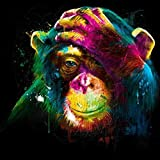5D DIY Diamond Painting Supplies Crystal Rhinestone Acrylic Paint by Number Kits Embroidery Cross Stitch Arts Craft for Home Wall Decor, Monkey