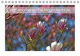 Naturmomente: Die Magnolienblüte (Tischkalender 2018 DIN A5 quer): Die Magnolie - unser schönster Frühlungsbote (Monatskalender, 14 Seiten ) (CALVENDO ... [Kalender] [Apr 01, 2017] Eisold, Hanns-Peter