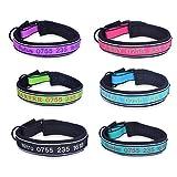 YouFia Hundehalsband Halsbänder mit Name Telefonnummer Bestickt Personalisierte Haustier Halsband,Hellblau,M