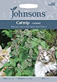 Johnsons UK/JO/FL Catnip Catmint