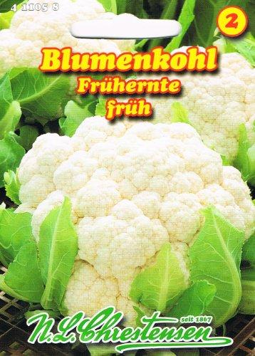 Blumenkohl Frühernte (Portion)