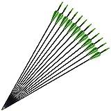 Flèches en Fibre de Verre Flèche de ciblage DE 31 Pouces pour la Pratique du tir à l'arc avec Pointe de Flèche Fixe 800 Spine (Paquet DE 12)