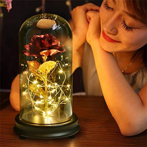 Mrinb Schönheit und das Biest Rose 24K Gold Plating Rose Blume in Einer Glaskuppel mit LED Lichterkette Geschenk Frauen Mädchen am Geburtstag Valentinstag Muttertag Weihnachtsferien (24k Rose Bouquet)